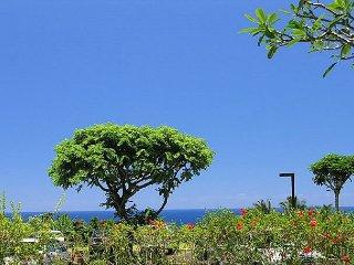 Ground floor ocean view condo, resort amenities, great rate.