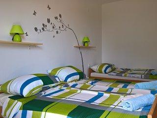 Studio 'Green tree' near Zrće beach