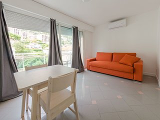 Studio neuf terrasse + toit terrasse limit Monaco vue mer