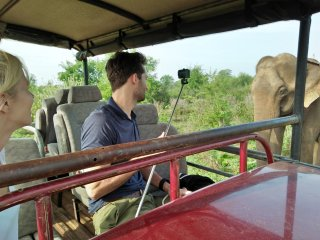 Safari and Rooms