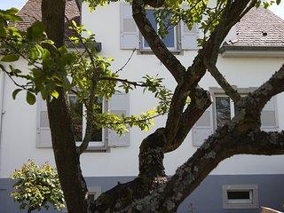 AULOUISON2 beau 3 pieces de 90 m2 avec jardins proche du parlement Europeen