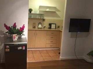 Newly renovated  spacious and comfy one bedder in Central Potts Point