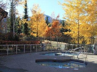 Luxury 2 bdm Ski in, ski out upgraded condo,hot tubs, pool, free internet