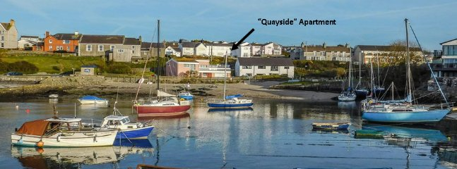 Location of Harbour View Flats. 'Quayside' is located at the rear of the building.