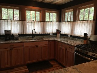 State of The Art Kitchen Totally remodeled