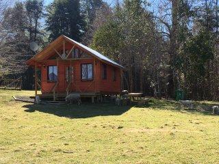 Pequena Cabana en la Pradera en Pucon
