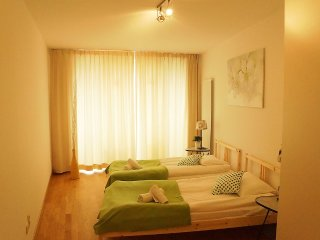 Apartment in the center of Brussels with Internet, Lift, Balcony (139345)