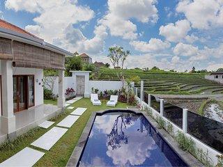 Villa Serigala - Canggu Bali