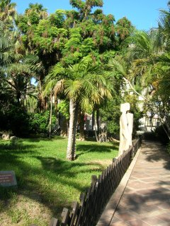 Sculptures and tropical trees in the nearby Parque el Majuelo
