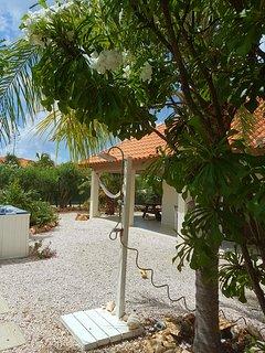 Garden shower under a Hugh palm tree