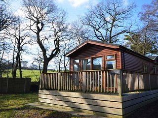 TRLOD Log Cabin in Okehampton