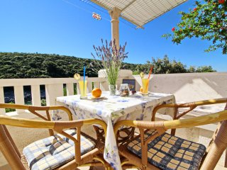 Apartments Villa Ana - Standard One Bedroom Apartment with Terrace and Sea View