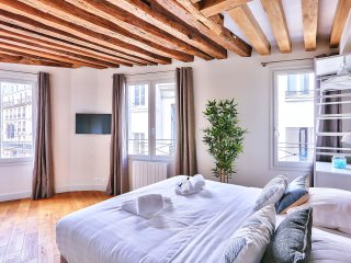 Elegant apartment in 2 steps of Notre Dame (366)