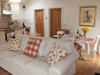 Russet has a very spacious open plan living room