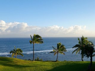 Alluring 1BR Kauai Condo w/Unobstructed Ocean Views - Pool Access & Walking
