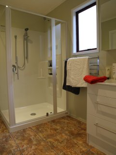 Large modern shower with separate toilet