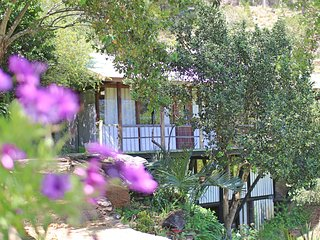 Beautiful, private home on an award winning, working olive oil farm