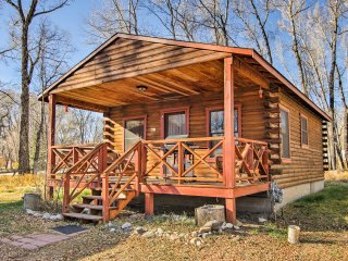 NEW! 'Wintersong' 1BR Buena Vista Cabin in Forest!
