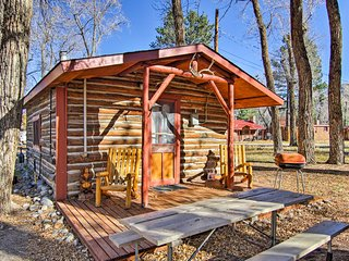Romantic Cabin Near Downtown BV & Arkansas River!