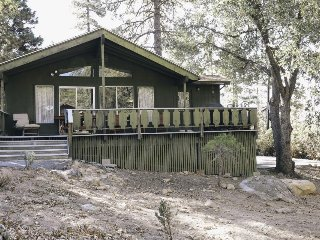 Dog-friendly chalet surrounded by towering trees and hiking adventures