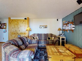Ski-in/ski-out studio w/ wood stove, shared hot tub & home conveniences!