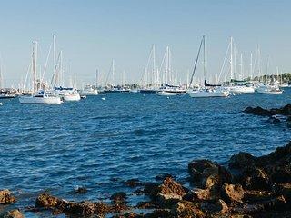 Lots of boats, quantity varies depending on season