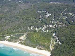 PACIFIC PALMS  - Elizabeth Beach, NSW