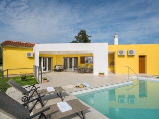 Lovely modern villa Limone with pool and sauna near Pula