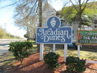 Arcadian Dunes 26-608 ~ RA69623