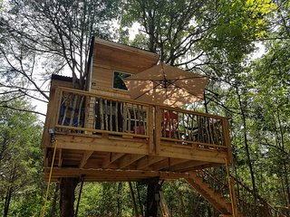 Ra's Eufaula Treehouse Tree-sort = New Modern Treehouse actually in two trees