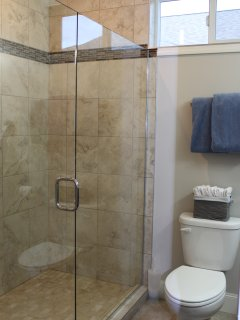 Walk in shower in master bathroom