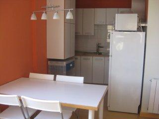 Coqueto e impecable apartamento en el centro neuralgico  de Tudela .