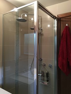 Shower with fixed & handheld shower heads