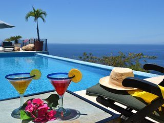 Live Like a Rock Star In Puerto Vallarta, Mexico. +18 guests