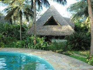 Simba cottage - Shambani