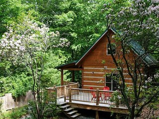 Laurel Ridge one bed log cabin in the heart of Nantahala Forest, close to lake