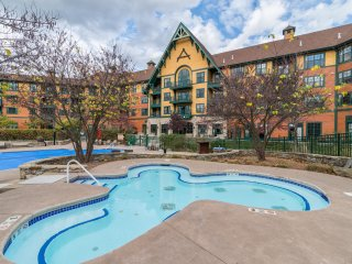 G's Amazing 1 BR Mtn Front condo #D20 * Appalachian * Mountain Creek Resort
