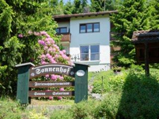 Loftwohnung, Sauna im Haus
