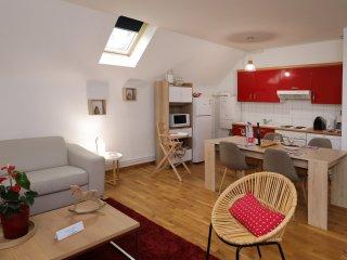 HANSI centre ville 1 chambre + canape lit au salon