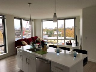 Luxury Condo at Harvard Business School close to MIT and BU - 2Bedroom, 2Bath