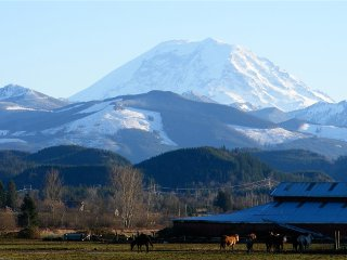 Luxury at the foot of Mt Rainier-the Perfect access to National Parks and Trails