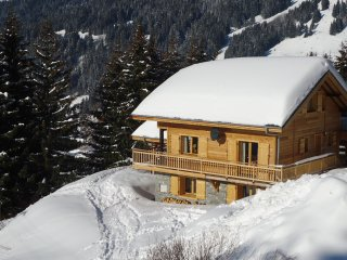 Celine - Beautiful 5 Bedroom Chalet, Ski Back, wood burning stove