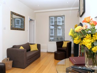 Kensington  Luxury - Sleeps 1-3 and just 1 minute walk to Tube and overground