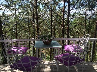 Tree house furnished on pine hill forest view