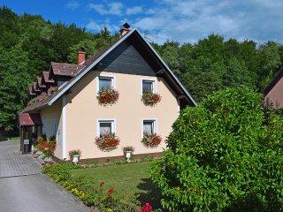 Slovenia long term rental in Lower Carniola Region, Smarjeske Toplice