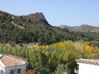 Alojamiento turistico 'El Pedregal del Tocon'