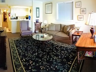 2Bedrooms and 1Bathroom Adjacent to the French Quarter (up-to-date interior)