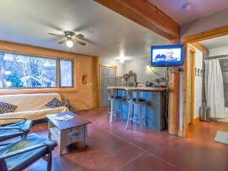 Fantastic Pet Friendly Studio Right On the River in Downtown Steamboat