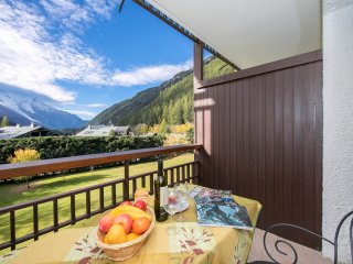 Residence Grands Montets 413