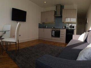Urban Apartments - Studio Apartment - 9